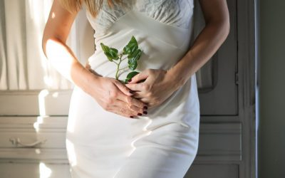 Reclaiming our womb space as part of the fertility journey: interview with Dr. Liv Stanzer, PT