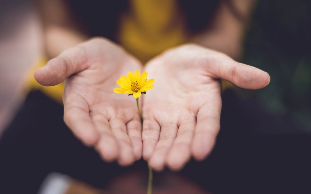 3 Ways Mindfulness Can Support Your Fertility Journey